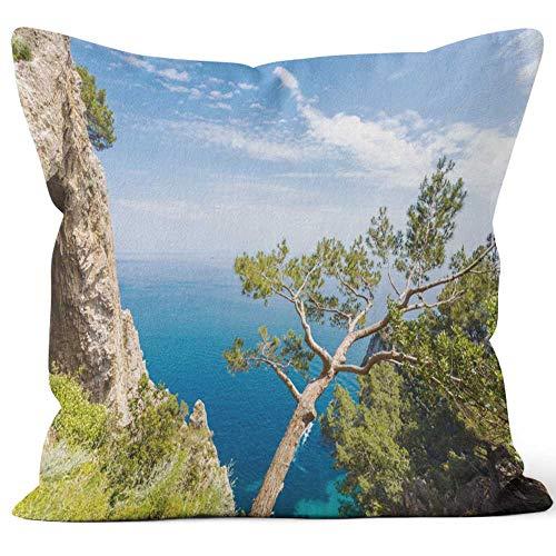 - Nine City Capri Home Decorative Throw Pillow Cover,HD Printing Square Pillow case,40