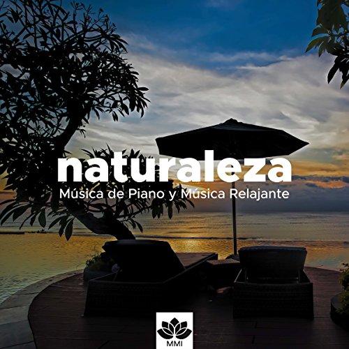 Naturaleza - Música de Piano y Música Relajante con los Sonidos del Océano, Agua,