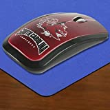 NCAA South Carolina Gamecocks Team Color Wireless Mouse