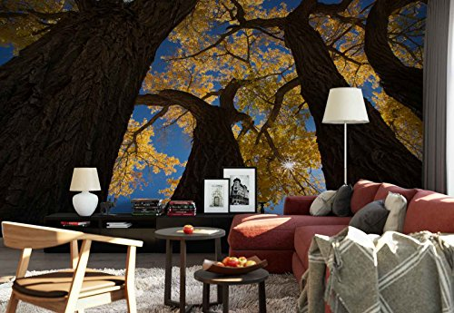 - Photo wallpaper wall mural - Cottonwood Trees Canopy Blossom - Theme Forest & Trees - L - 8ft 4in x 6ft (WxH) - 2 Pieces - Printed on 130gsm Non-Woven Paper - 1X-1045293V4