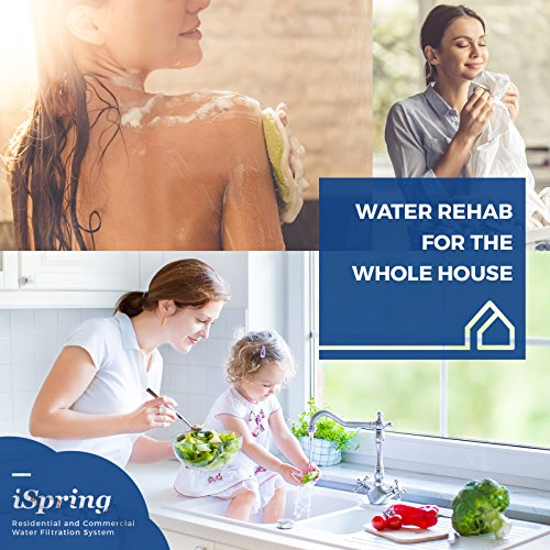 iSpring WGB22B-PB 2-Stage Whole House Water Filtration System w/20-Inch Carbon Block and Iron & Lead Reducing Filter