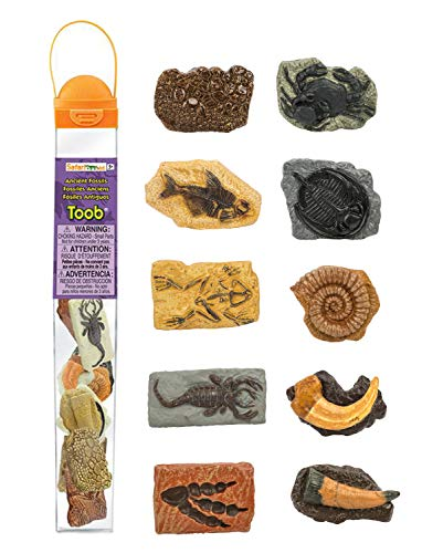 (Safari Ltd Ancient Fossils TOOB with 10 Toy Figurines Including Dino Footprint, Giant Crab, Ammonite, Raptor Claw, Fossilized Frog, Trilobite, T-Rex Tooth, Fossilized Fish, Dino Skin, and Sea Scorpion )