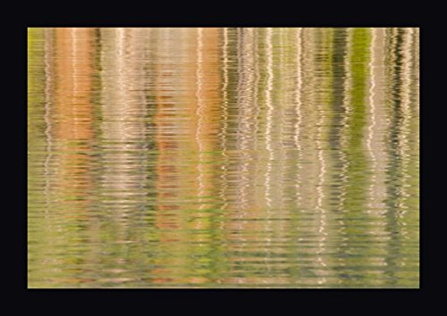 Idaho Fall Reflections Ripple on Redfish Lake by Don Paulson - 23
