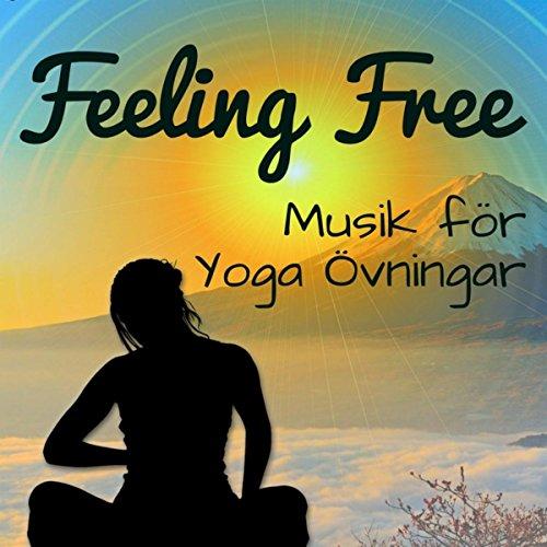 feeling free chillout lounge avslappnande musik f r chakra meditation yoga vningar behandling. Black Bedroom Furniture Sets. Home Design Ideas
