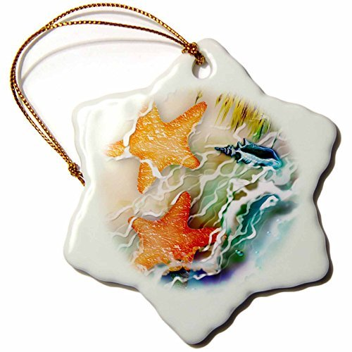 Ornaments to Paint Dream Essence Designs-Animals - Two Starfish and Seashell near Ocean along the Seashore Digital Art -