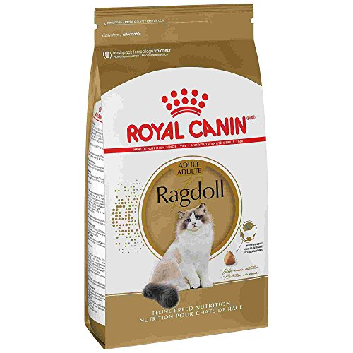 ROYAL CANIN BREED HEALTH NUTRITION Ragdoll dry cat food, 7-Pound