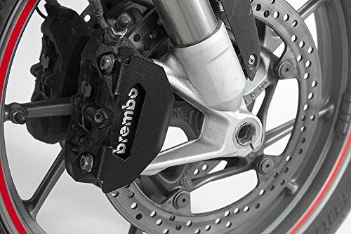 Front brake caliper cover guard (black) BMW R1200GS 2013+, R1200GS Adventure 2014 2015 2016 2017, F800R 2015+, R1200R 2015+, R1200RS, R1200RT 2014+, RnineT, S1000XR -  Ro-Moto, RO.01.30.03.01