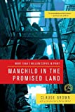 Manchild in the Promised Land, Claude Brown, 145163157X