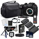 Panasonic Lumix DC-GH5S Mirrorless Micro Four Thirds Digital Camera DC-GH5S - Platinum level Bundle- International Version (No Warranty)
