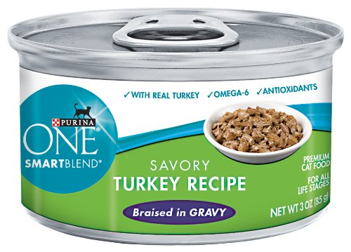 Purina ONE Cat Food, Savory Turkey Recipe Braised in Gravy, 3-Ounce (Pack of 24), My Pet Supplies