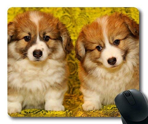 Custom Mouse pad,Dog Lover Mouse Pad,Puppies The Pembroke Welsh Corgi Pet Darling,Dogs Gaming Mouse mat