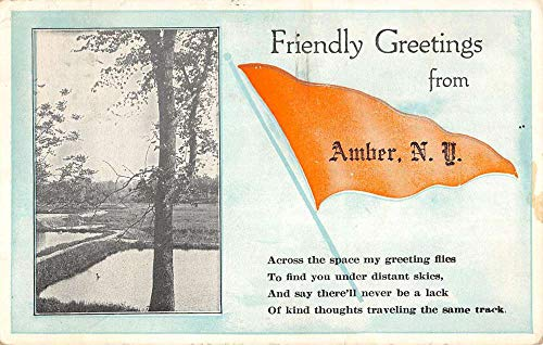 Amber New York Scenic Waterfront Pennant Flag Antique Postcard K670912