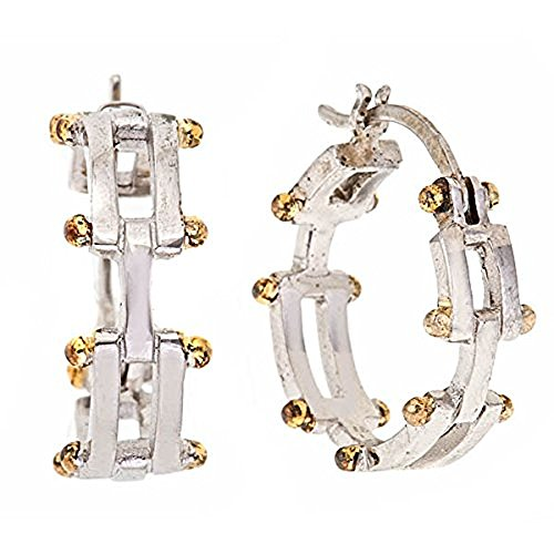 Gatelink Earrings - 1