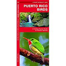Puerto Rico Birds: A Folding Pocket Guide to Familiar Species