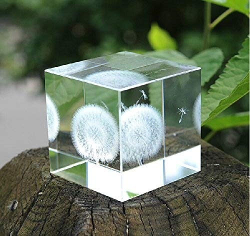 Birthday Glass Cube (Berry President Creative 3D Laser Etched Crystal Dandelion Cube Paperweight - Birthday 2.36'')