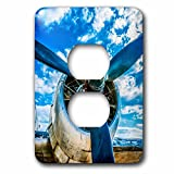 3dRose Alexis Photography - Transport Air - Abstracts of aviation - Piston engine of a vintage aircraft, blue sky - Light Switch Covers - 2 plug outlet cover (lsp_271980_6)
