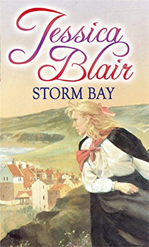 book cover of Storm Bay