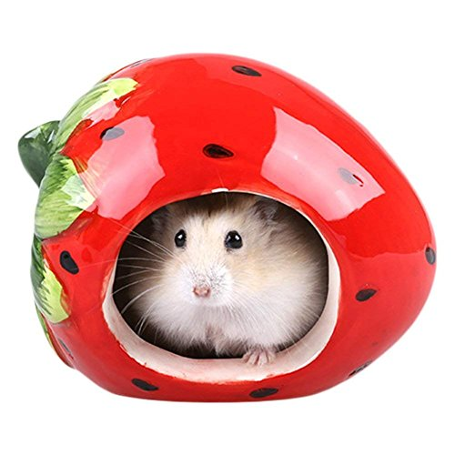 Dwarf Hamster Hideout Adorable Cartoon Shape Hamster House Chinchilla Mini Hut Small Animal Ceramic Hideout Cave (Strawberry)
