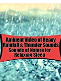 Tranquil & Ambient Video of Heavy Rainfall & Thunder Sounds for Relaxing Sleep Ambient Sounds For Sleep In Prime 6 Hours
