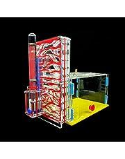 Ant Farm, KKmoon T-Design Area di alimentazione Acrilico Farm Insect Villa Pet Mania House Ant Nest Regalo di compleanno Regalo