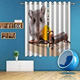 ALUONI Wild Mouse and Mousetrap with Cheese Close Up Isolated Digital Art Print Polyester Window Curtains,051268 for Living Room,63 in x 63 in