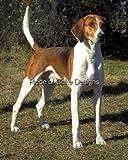 1/4 Sheet ~ American Foxhound ~ Dog Breed ~ Edible Image Cake/Cupcake Topper!!!