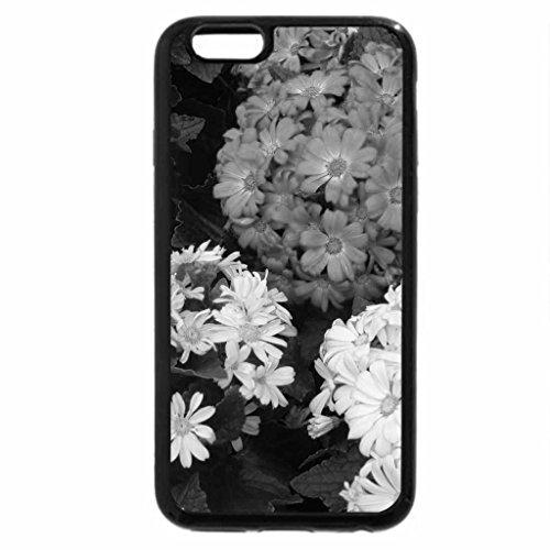 iPhone 6S Plus Case, iPhone 6 Plus Case (Black & White) - Lovely Gerbera's!