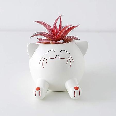 Dinosaur Planter Succulent Vase Landscape Flower//Plant Pot Gardening Decor Gift