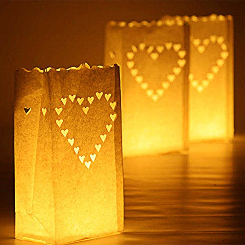 Lighted Bags Outdoor in Florida - 5