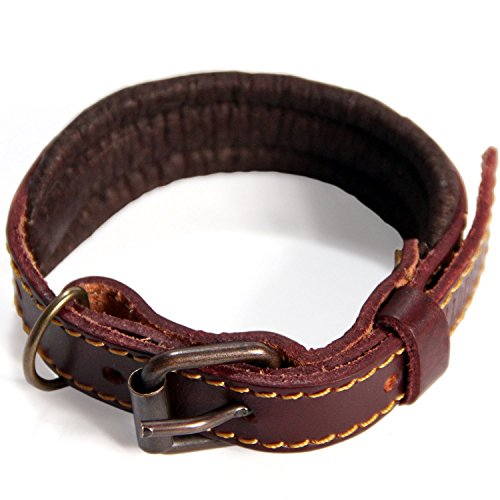 Petsmart Tags Dog (Logical Leather Padded Dog Collar - Best Full Grain Heavy Duty Genuine Leather Collar - Brown - Extra Small)