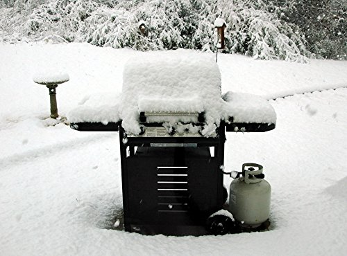 LAMINATED POSTER Snow Covered BBQ Grille Seasons Poster Print 24x 36