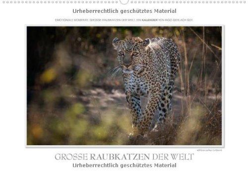Emotionale Momente: Große Raubkatzen der Welt. (Wandkalender 2014 DIN A2 quer): Ob Tiger, Leopard oder Löwe - die große Raubkatzen der Welt sind ausgesucht. (Monatskalender, 14 Seiten)