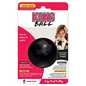 Kong Extreme Ball Small Dog Toy, Black Click on image for further info.