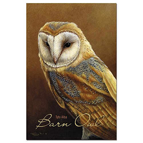 "Tree-Free Greetings ECOnotes Blank Note Cards, Matching Envelopes, Blank Stationary Card Set, 4"" x 6"", Barn Owl, Pack of 12 (FS66697)"