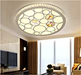 Lilamins Creativeled Acrylic Ceiling Lamp Housing Round Study LampCeiling Lights for Hallway, Aisle, Porch, BedroomCeiling Lights for Hallway, Aisle, Porch, Bedroom,530Mm
