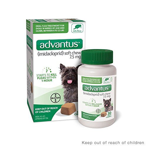 ADVANTUS CORPORATION Advantus Flea Soft Chews for Small Dogs 4-22lbs, 30 count, 30 CT
