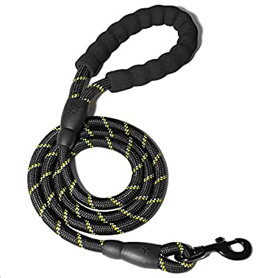 WePet 5 FT Strong Dog Leash with Comfortable Padded Handle and Highly Reflective Threads Dog Leashes for Medium and Large Dogs - Limited Time Offer