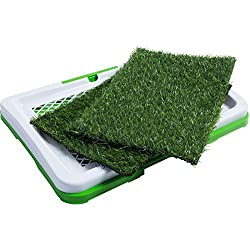 Dog Pee Grass Patch Train Your Dog To Go To The Grass