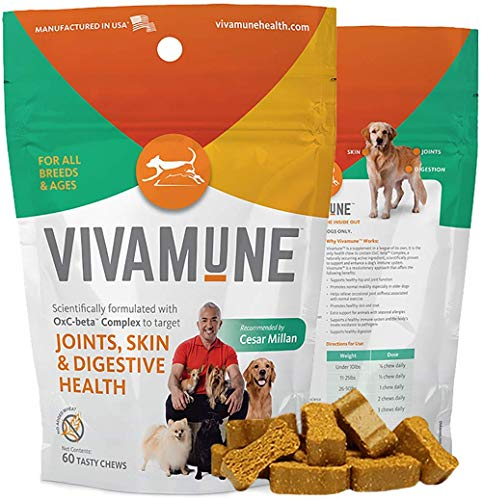 Vivamune: Tasty Health Dog Chew Supplement – Dog Vitamins For All Breeds & Ages – 60 CT – Aid Immune System & Digestion – Healthy Joint & Hip Function – Itching & Allergy – Recommended by Cesar Millan