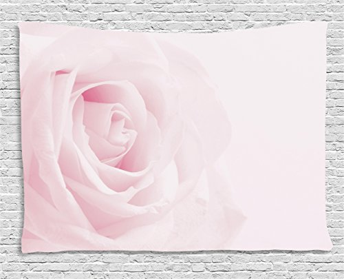 Ambesonne Rose Tapestry, Pink Rose Close up with Soft Blur Focus Fresh Fragrance Smell Love Valentine's Day, Wall Hanging for Bedroom Living Room Dorm, 60 W X 40 L inches, Pale Pink