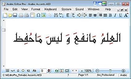 Arabic Editor Pro: Amazon co uk: Software