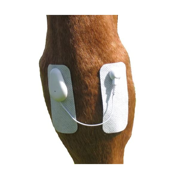 Microlief Under Wraps - Natural Pain Relief Therapy Patch for Equine Injury Prevention, Treatment, Recovery and Rehabilitation 3