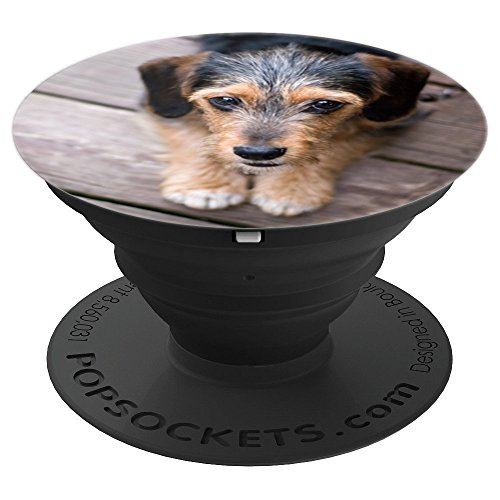 Terrier Mix Puppy - Puppy Dog Eyes - Terrier Mix - PopSockets Grip and Stand for Phones and Tablets