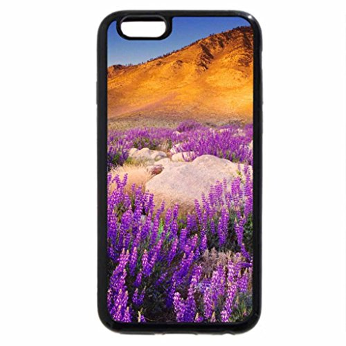 iPhone 6S / iPhone 6 Case (Black) California scenery