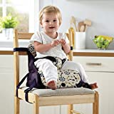 Image of Munchkin Travel Booster Seat