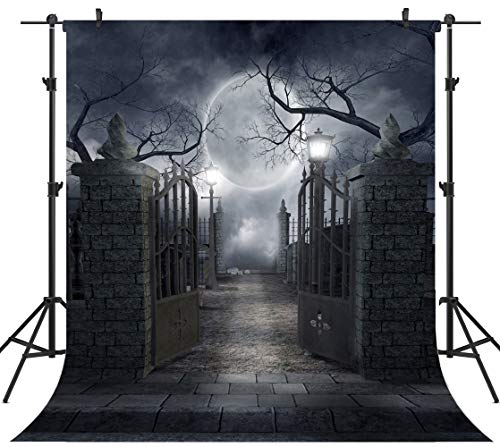 OUYIDA 10X10FT Halloween Theme Pictorial Cloth Customized Photography Backdrop Background Studio Prop TP17C -