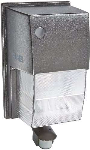 RAB Lighting WPTF28MS Tallpack Smartpack CFL Lamp with Bu...