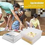 Hatching Egg Incubator 16 Eggs Digital Mini