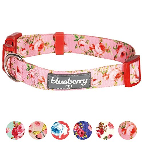 Blueberry Pet 8 Patterns Spring Scent Inspired Floral Rose Baby Pink Dog Collar, X-Small, Neck 7.5