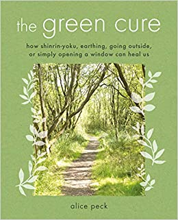 Can Spending Time In Nature Improve >> The Green Cure How Shinrin Yoku Earthing Going Outside Or Simply